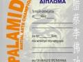 diploma-2012